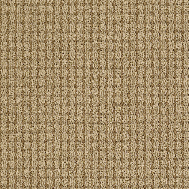 Brown carpet floor tailored dreams carpet guesthouse contemporary