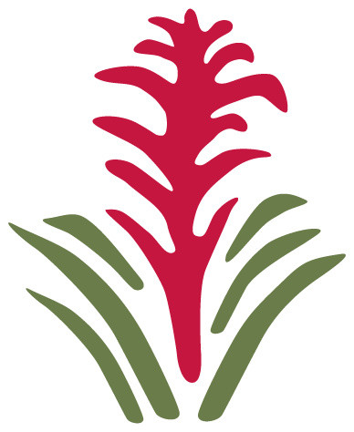 Bromeliad flower stencil for painting contemporary wall stencils