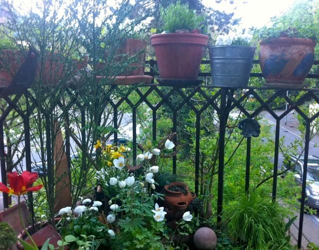 balkon rustikal garten von nelka bepflanzung dachterrasse balkon innenhof. Black Bedroom Furniture Sets. Home Design Ideas