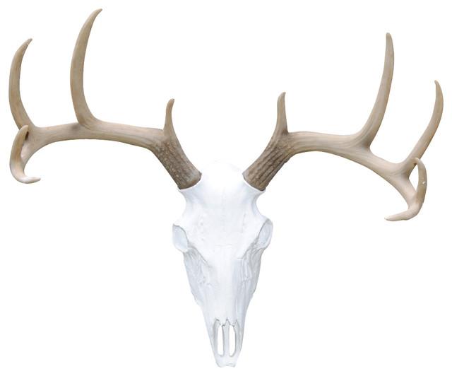 Deer Mount Wall Decor : Deer skull natural antlers wall mount southwestern