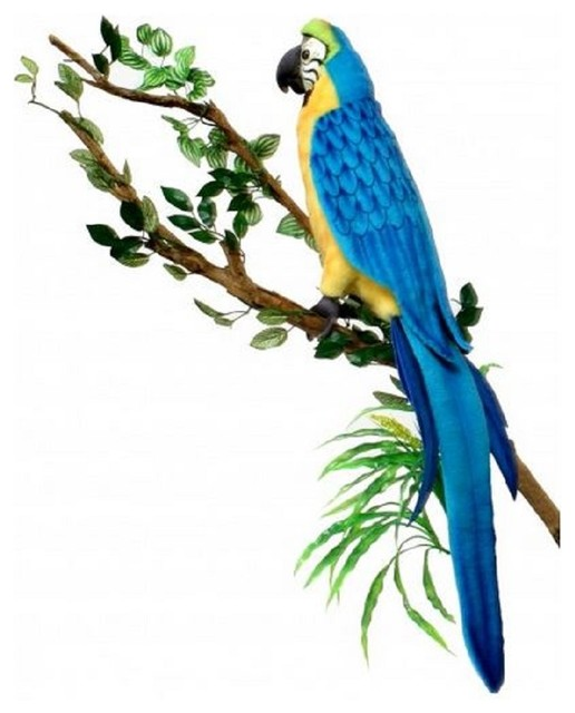 Blue And Gold Macaw Toys 6