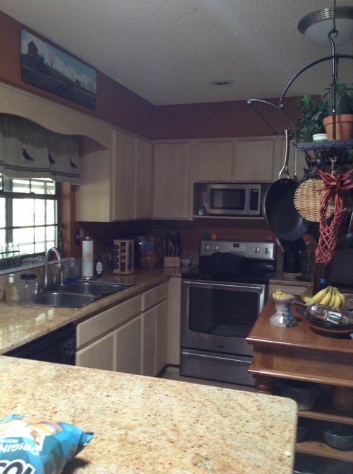 Kitchen update - refacing vs new cabinets
