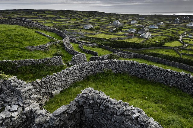 Stone Walls and Pasture in Ireland Wallpaper Wall Mural ...