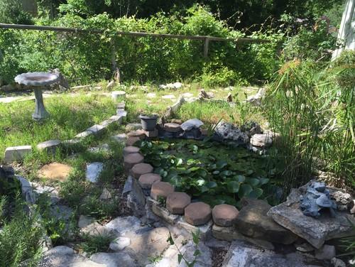 help me fix my yard