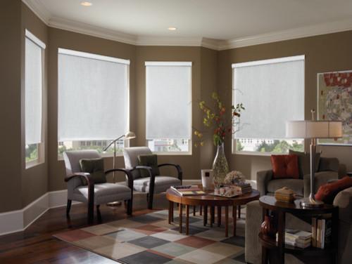 roller shades modern roller blinds phoenix by blinds chalet. Black Bedroom Furniture Sets. Home Design Ideas