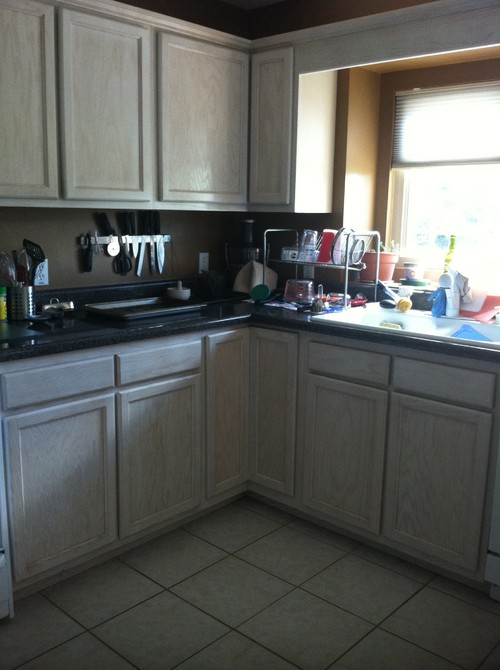 need help and advice on kitchen remodel