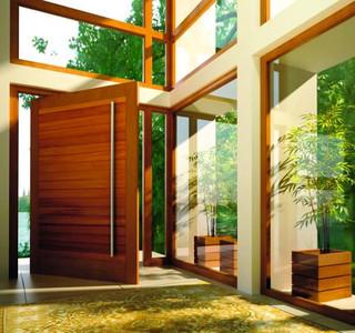 Pivot Doors Contemporary Front Doors Orange County