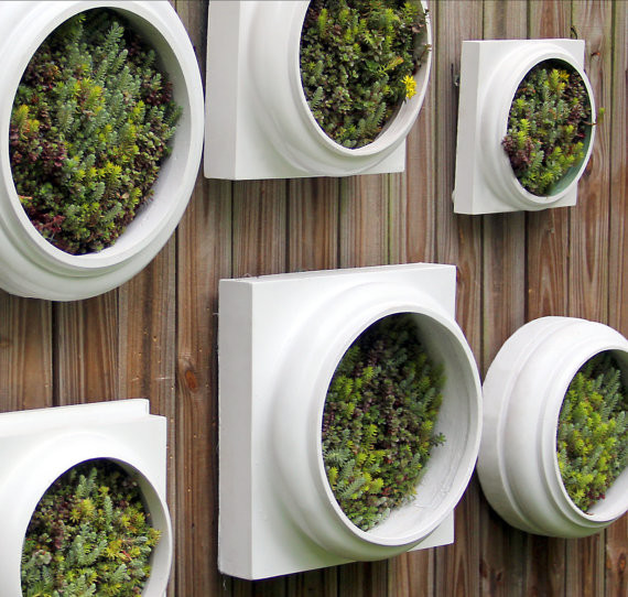 Living Wall Garden by Twisted Metals Contemporary