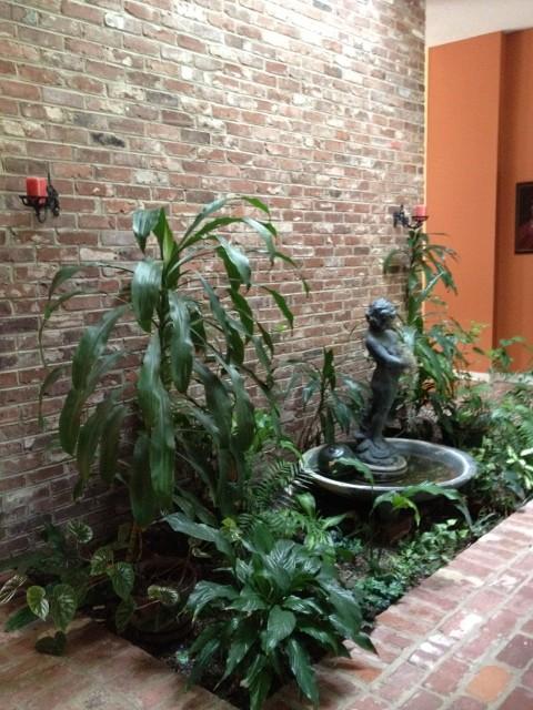 Help our 1970 39 s indoor garden for Garden design 1970s