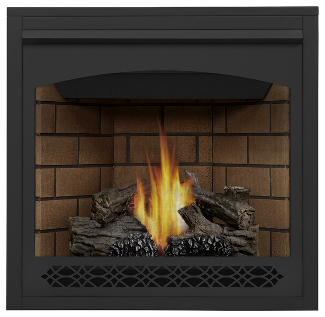 Direct Vent Clean Face Gas Fireplace Blower And Panels Traditional Indoor Fireplaces By