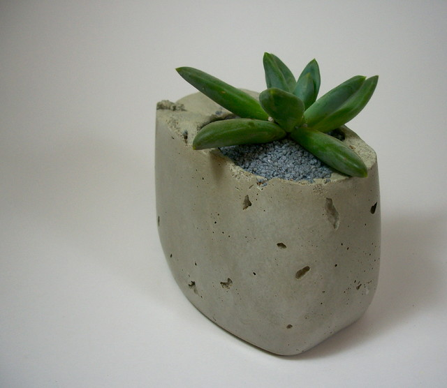 Dachshund in the Desert Handmade Concrete Planters - Modern - Indoor Pots And Planters ...