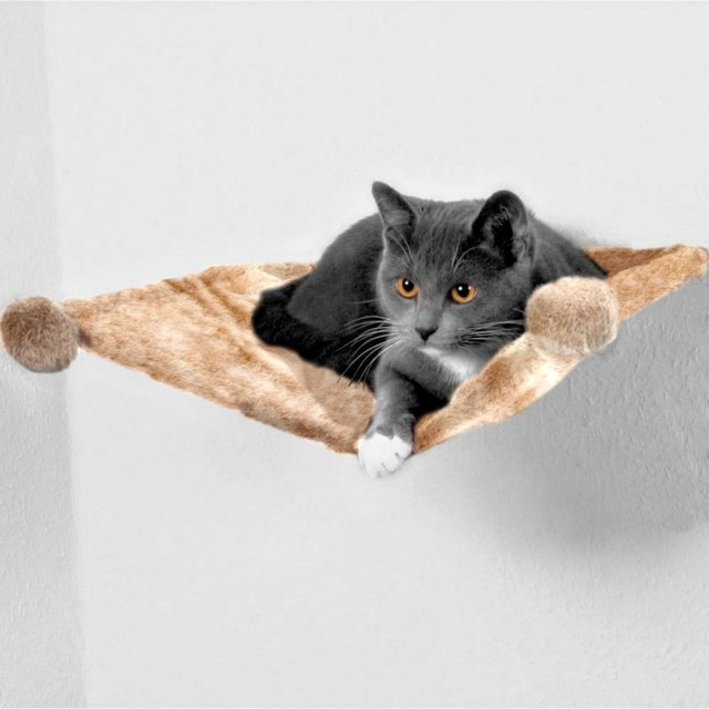trixie plush wall mounted cat bed beige contemporary cat beds other metro by zooplus. Black Bedroom Furniture Sets. Home Design Ideas
