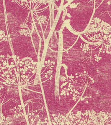 cow parsley wallpaper modern wallpaper by walnut