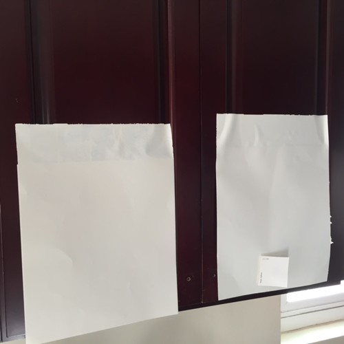 Advice on Painting kitchen Cabinets