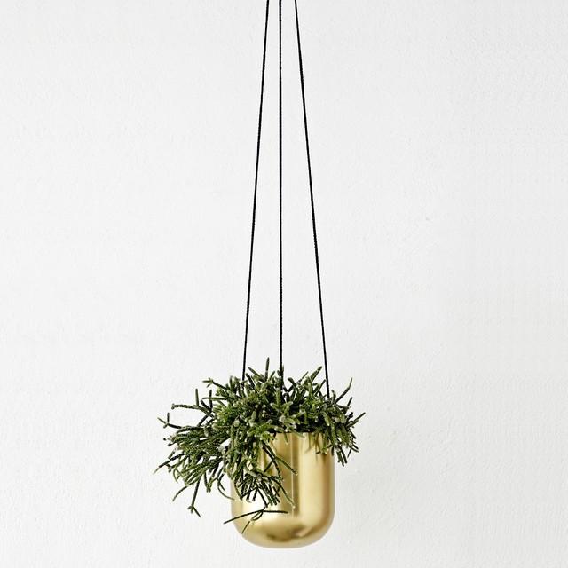 Hanging Flower Pot Holder Brass Contemporary Indoor