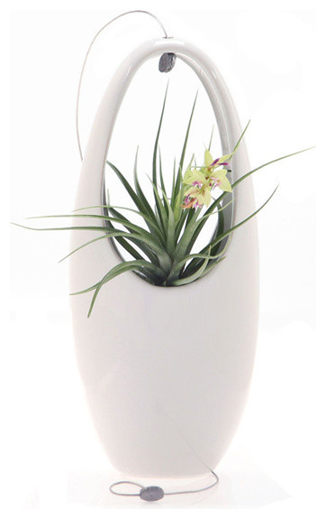 Hanging Aerium Egg White Contemporary Indoor Pots And