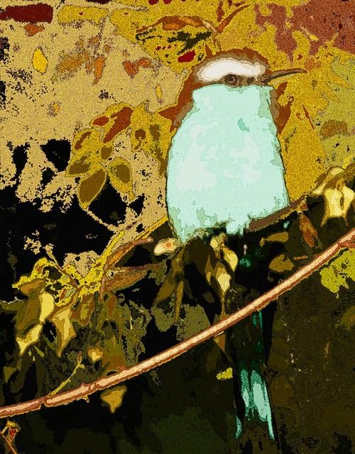 Blue bird wall mural contemporary wallpaper by for Bird mural wallpaper