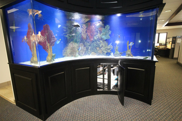 Built in fish tank for Fish tank riddle