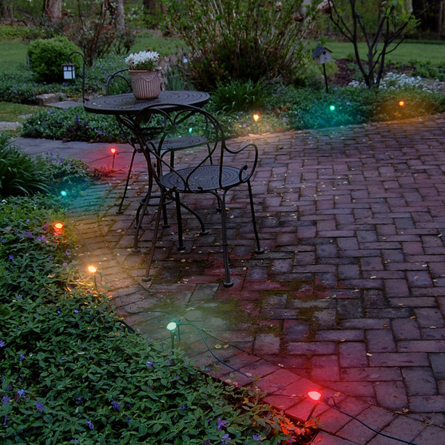 Electric Pathway Lights Multi Color - Traditional - Outdoor Rope And String Lights - by JH ...