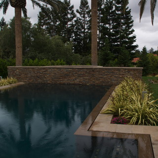 Zero Edge Pool With Raised Spa