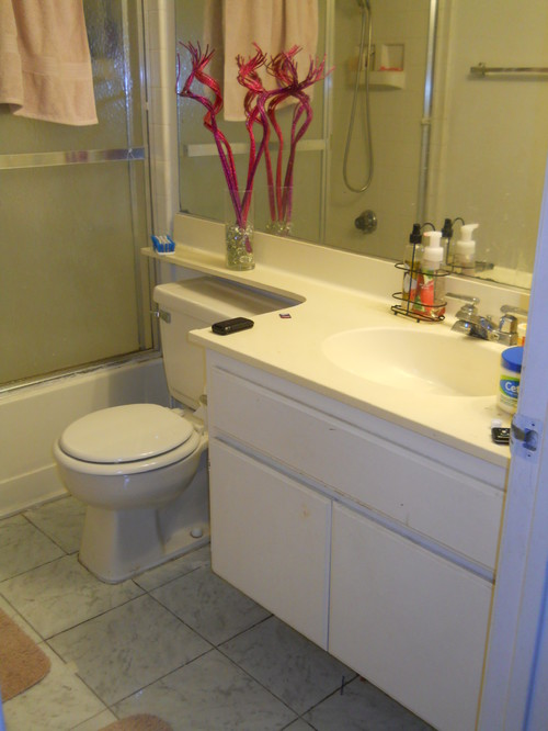 Need help on how to paint my bathroom for Need to remodel my bathroom