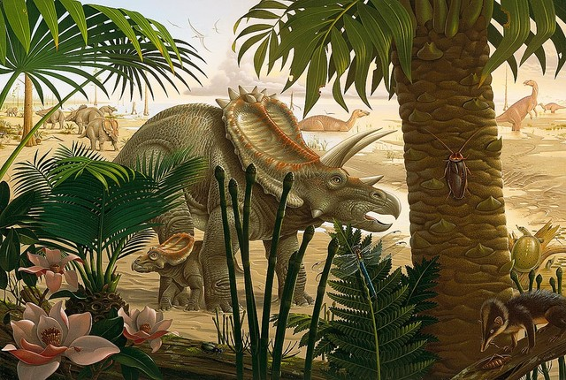Stenonychosaurus dinosaur wallpaper wall mural self for Dinosaur wall mural uk