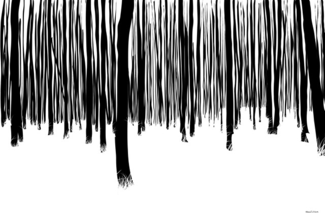 Maxwell dickson black and white forest abstract canvas for Black and white mural prints