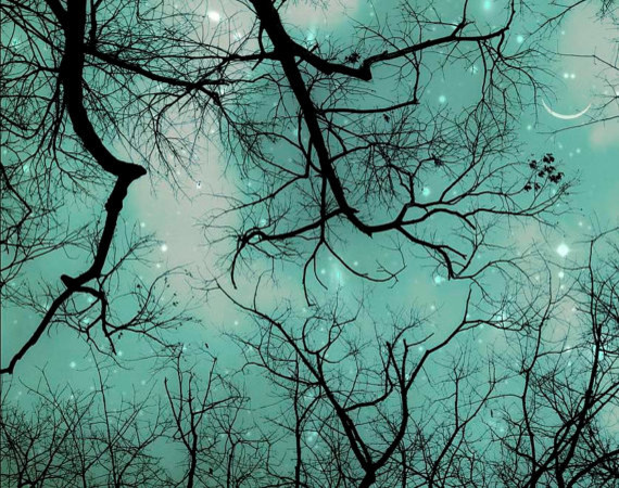 Winter Teal Christmas Sky By Raceytay Contemporary