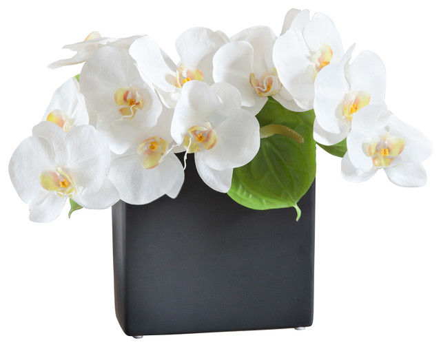 Quot artificial phalaenopsis orchid centerpiece zest