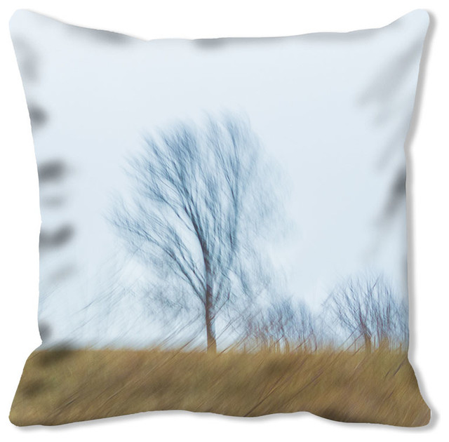 Throw Pillow DSC03413 with Sky Blue Faux Suede Back, 40x40 contemporary-decorative-pillows