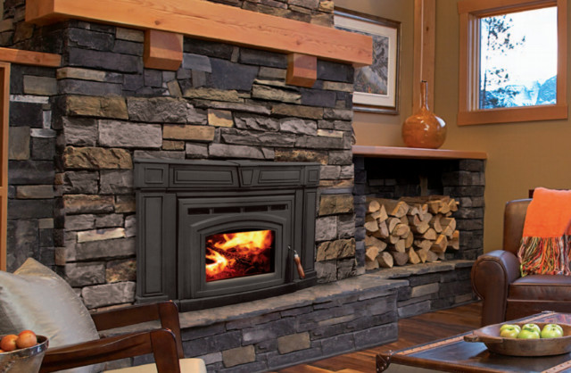 Enviro cabello 1200 series 32 39 39 x 21 39 39 wood burning insert Contemporary wood fireplace insert
