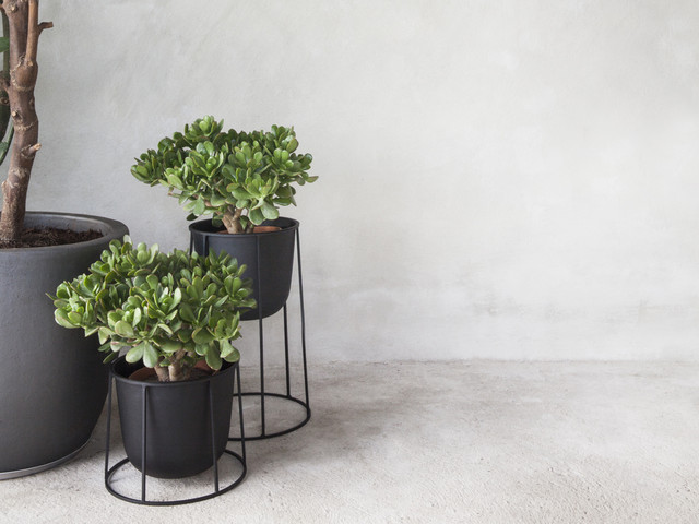 menu wire plant pot modern plant pots planters. Black Bedroom Furniture Sets. Home Design Ideas
