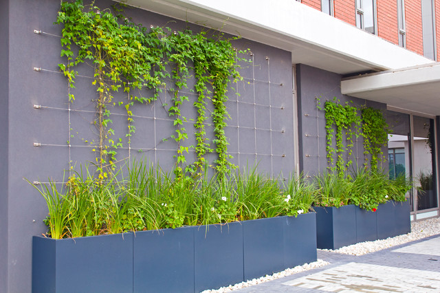 Green Wall Trellises Contemporary Other Metro By