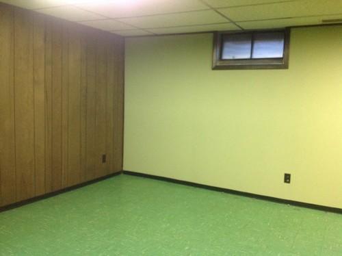 basement wood paneling