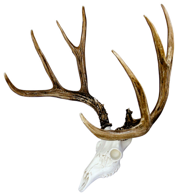 European Mule Deer Skull Mount Rustic Home Decor By
