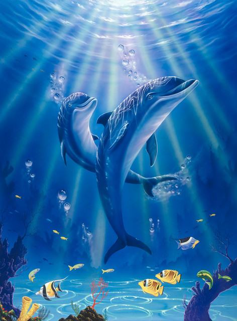 Sunlit dolphins wall mural contemporary wallpaper for Dolphin mural wallpaper