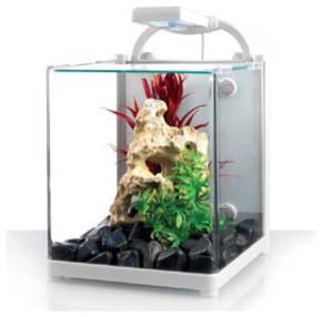Image gallery nano fish tank for Contemporary fish tank