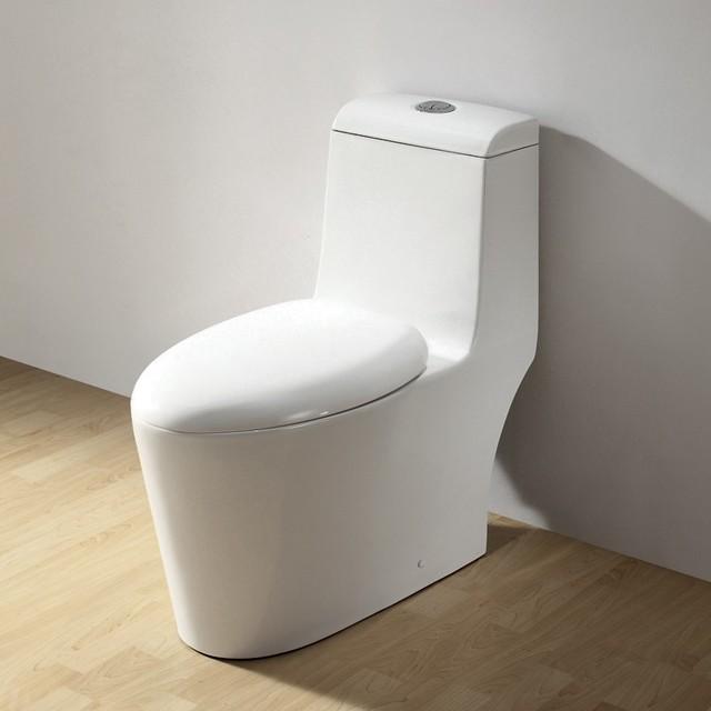 Ariel contemporary european toilet co1042 modern toilets new york by exotic home expo - Kleur modern toilet ...