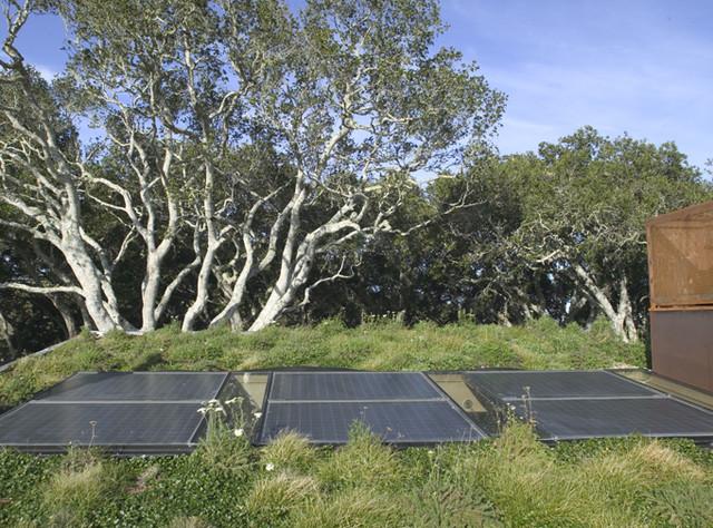 living roofs crown green design. Black Bedroom Furniture Sets. Home Design Ideas