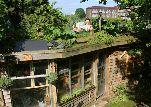 shed with garden on the roof
