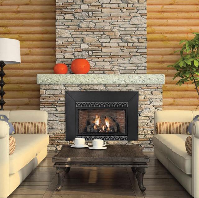 Vent-Free Ip 28000 Btu Fireplace Insert, Natural Gas ...