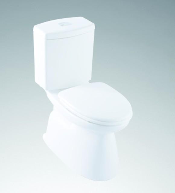 inax rio grande dual flush high efficiency. Black Bedroom Furniture Sets. Home Design Ideas