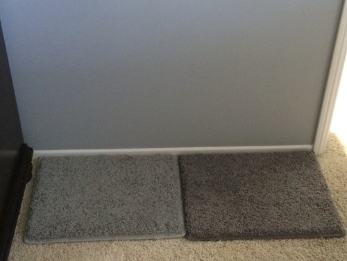 Dark or light carpet with Coventry Gray walls??