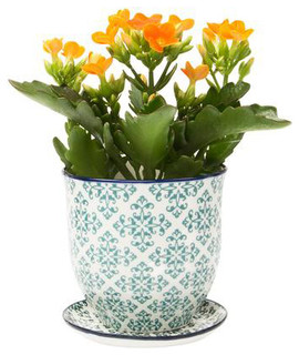 Brighton pot and saucer planter green diamond contemporary indoor pots planters by dot - Indoor plant pots with saucers ...