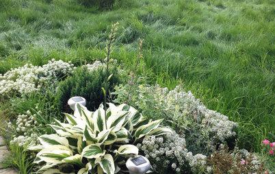 Что-то с чем-то: Как создавать композиции из растений