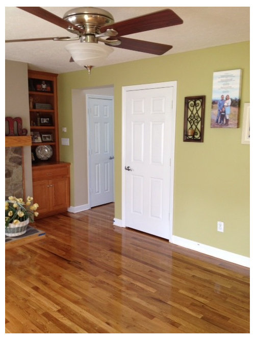 Need Help With Living Room Paint Color