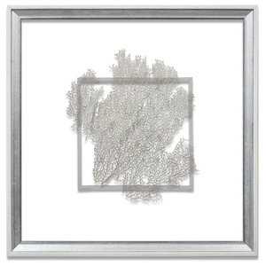 Classic Sea Fan Suspended Between Glass With A Decorative French Line, Silver