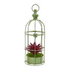 "15"" Succulent Artificial Plant in Decorative Cage"