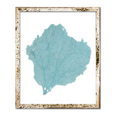 Sea Fan In Silver Acid Washed Frame, Teal