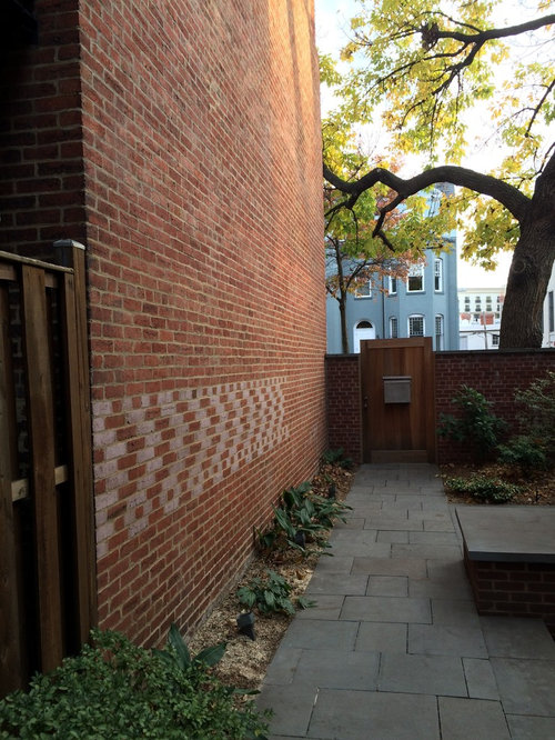Landscaping Ideas Against Brick Wall